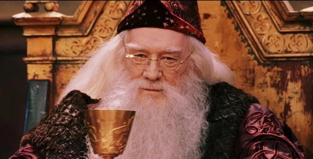 Albus Dambldor 4 Tys Izobrazhenij Najdeno V Yandeks Kartinkah Harry Potter Fakten Harry Potter Film Schauspieler