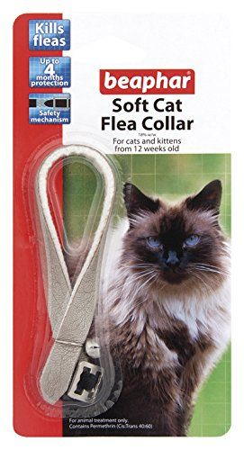 Beaphar Cat Flea Collar Catwalk Pack Of 12 You Can Get More Details By Clicking On The Image Catflealiceandtickcont Cat Fleas Cat Flea Collar Flea Collar