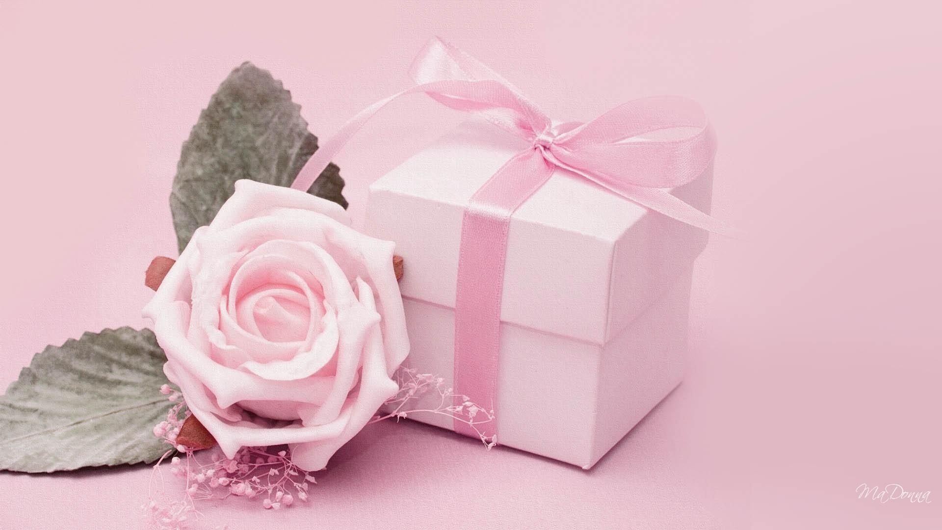 Romantic Gift For Her Pink Rose And Gift Hd Wallpaper 3437 Unique Valentines Day Gifts Flower Desktop Wallpaper Pink Flowers Background
