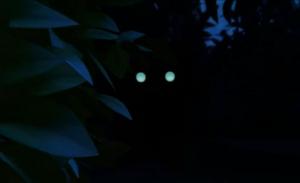 Lone wolf eyes