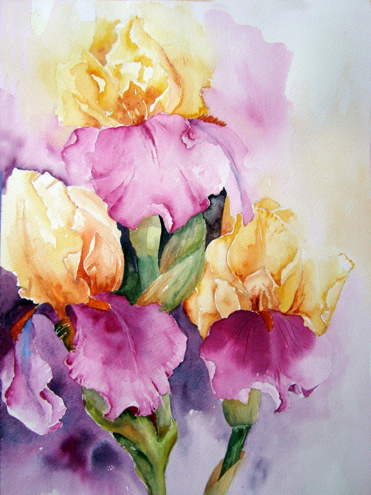 Watercolour Florals Iris Jazz Festival 2 Watercolor Art