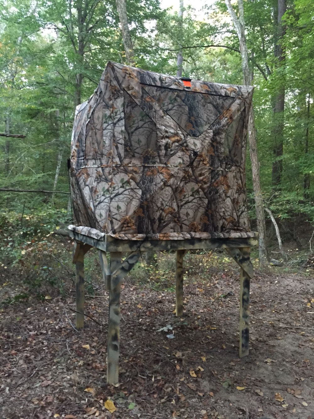 shown portable pop to door mossy tap the up blinds brush expand oak mob hunting s with ground blind rhino open