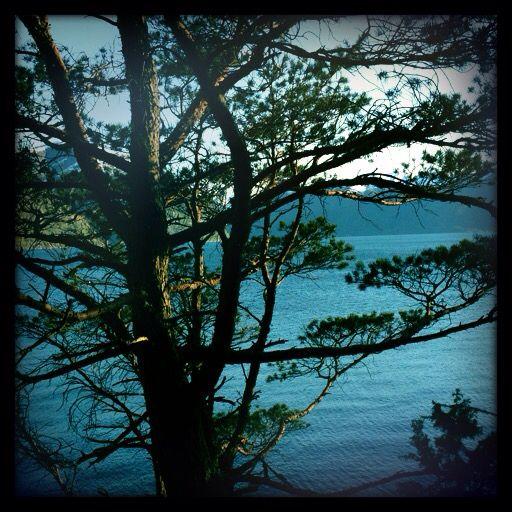 Sognefjorden i mai