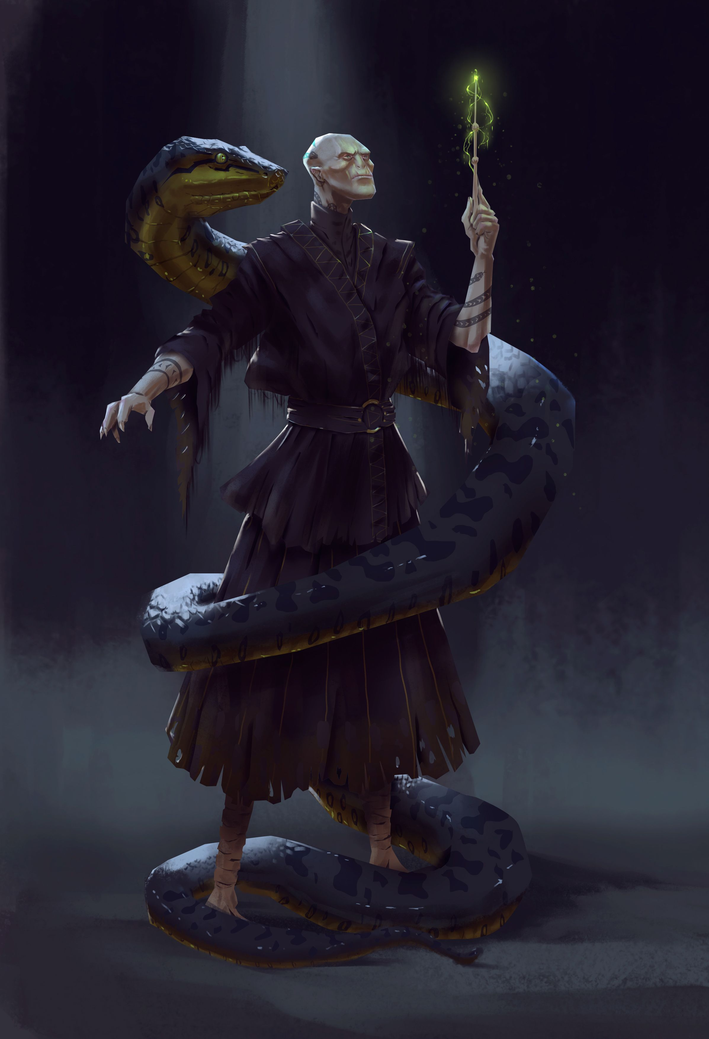 Harry Potter Character Design Challenge Facebook : Voldemort and nagini redesign i did for a facebook group