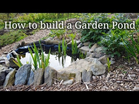 (14) How to build a small Garden Pond - YouTube   Ponds ...
