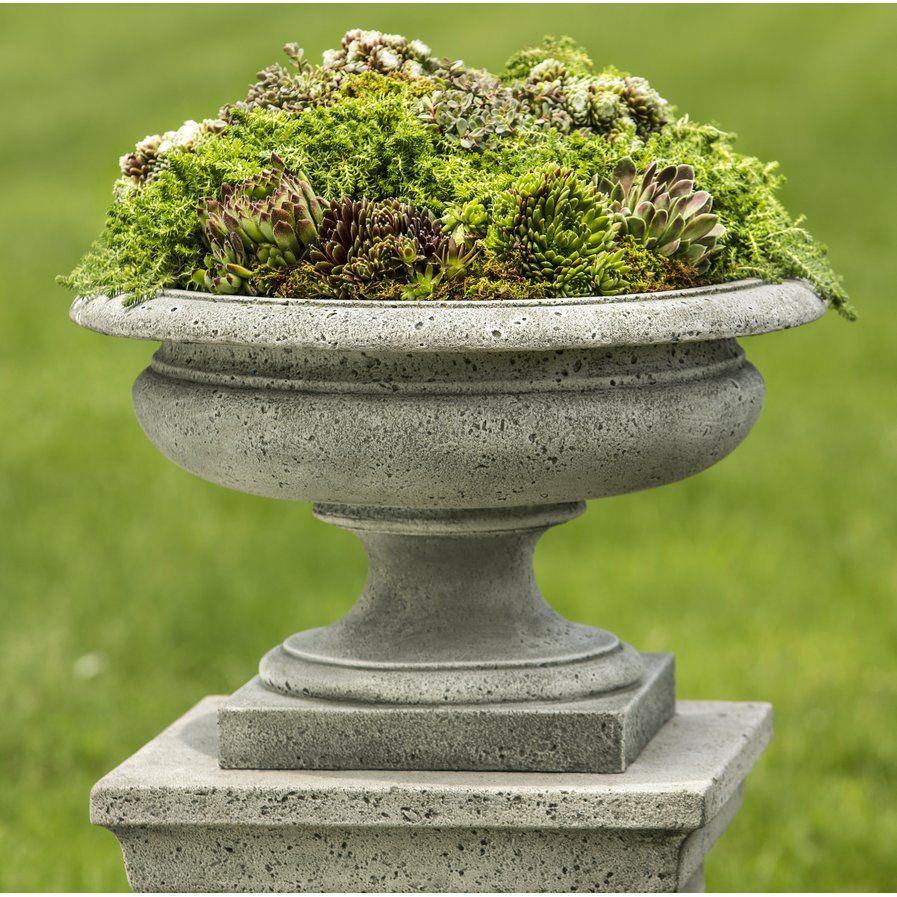 Sol 10 Outdoor™ Moreland Cast Stone Urn Planter  Wayfair  Stone
