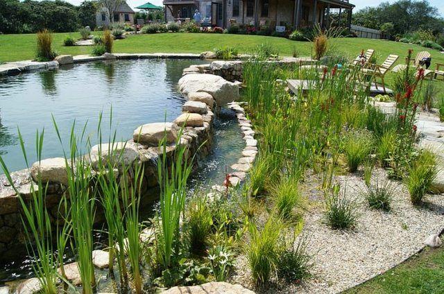 Idées d\u0027aménagement de piscine naturelle dans le jardin Front