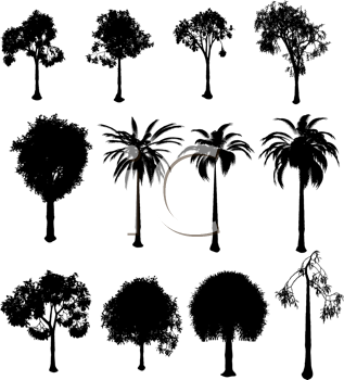 Royalty Free Clipart Image of a Collection of Trees