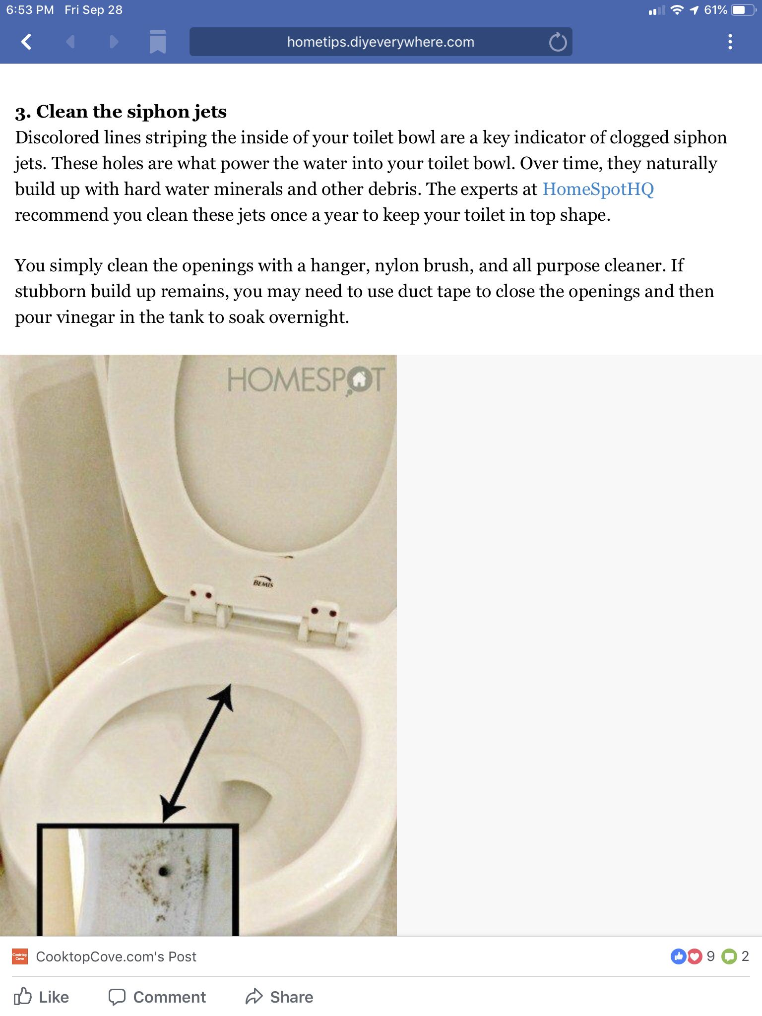Pin By Diane Lambert On Clean Toilet Bowl Toilet Cleaning