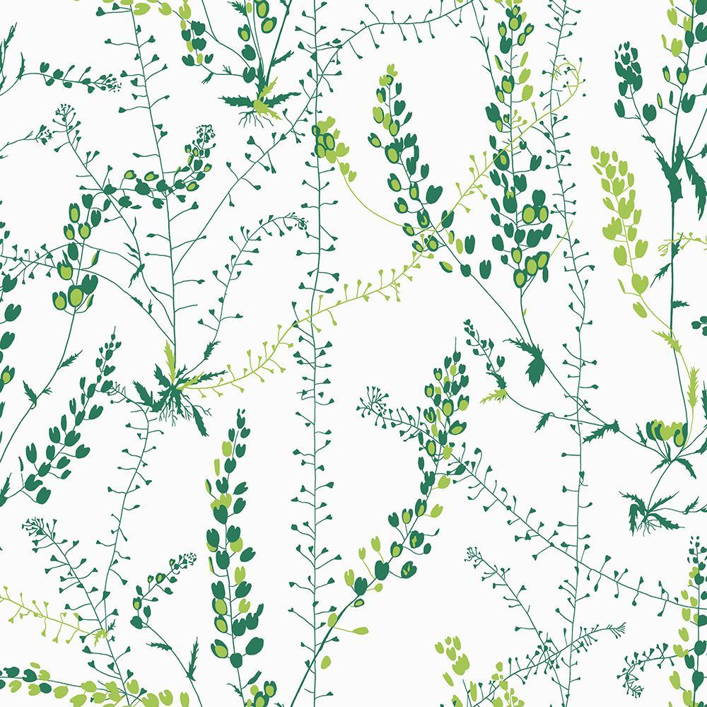 Unbranded Bladranker Green Botanical Green Wallpaper Sample-WV1787SAM - The Home Depot