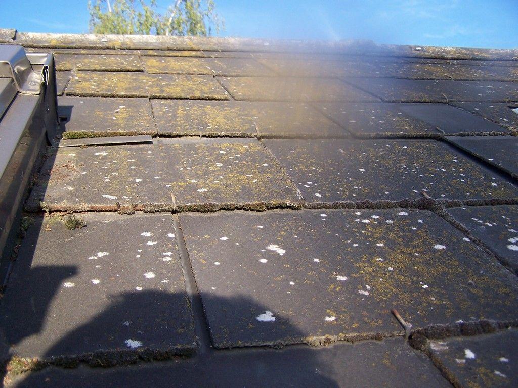 Coller Des Ardoises Entre Elles mousse terrasses ardoises tuiles | toiture ardoise, terrasse