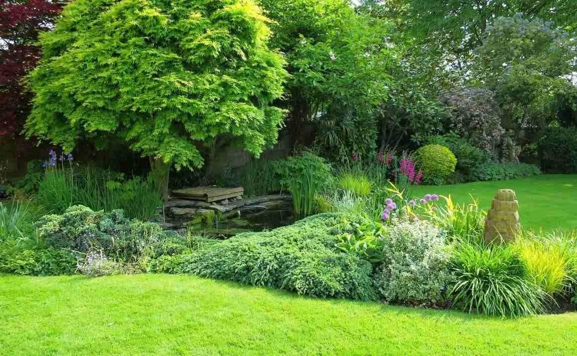 Pflanzplane Kostenlos Fur Den Vorgarten Tipps Und Beispiele Garten Anlegen Cottage Garten Garten Bepflanzen