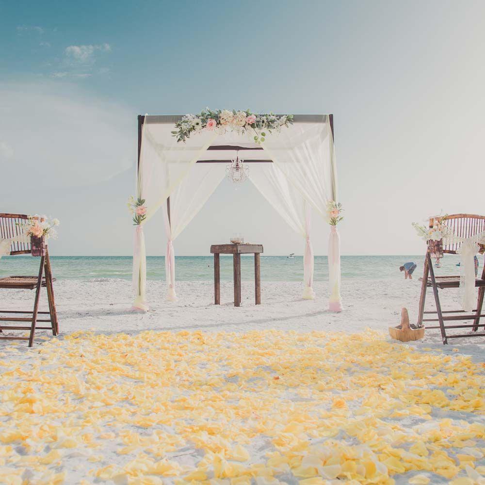 Wedding Ideas Florida: Let Us Create Your Dream Florida Beach Wedding Or Beach