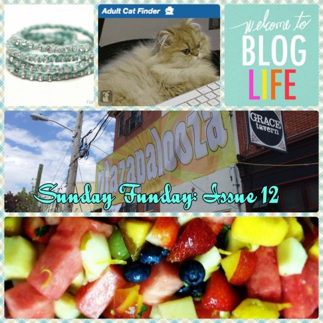 Sunday Funday: Issue 12 by Katie Crafts - Crafting, Sewing, Recipes and More! http://katiecrafts.com