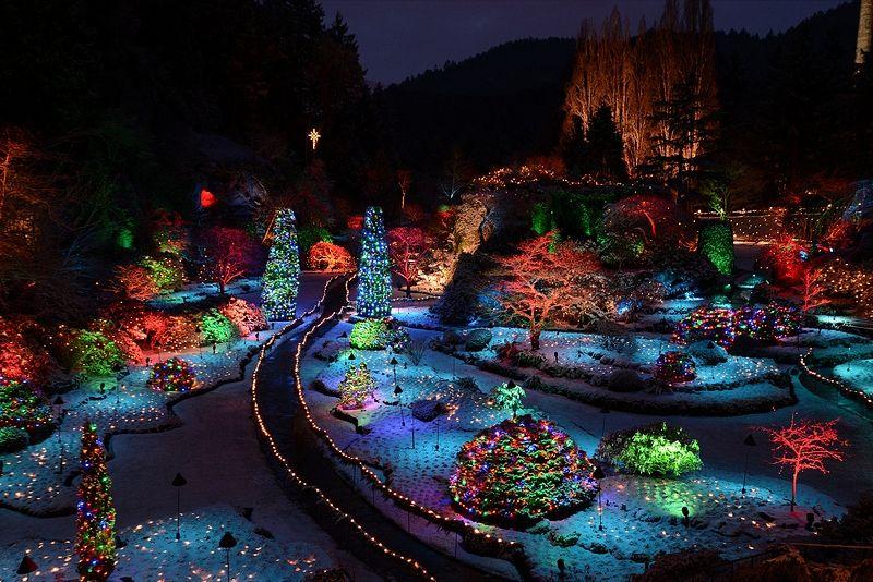 The Butchart Gardens Christmas Lights Tour