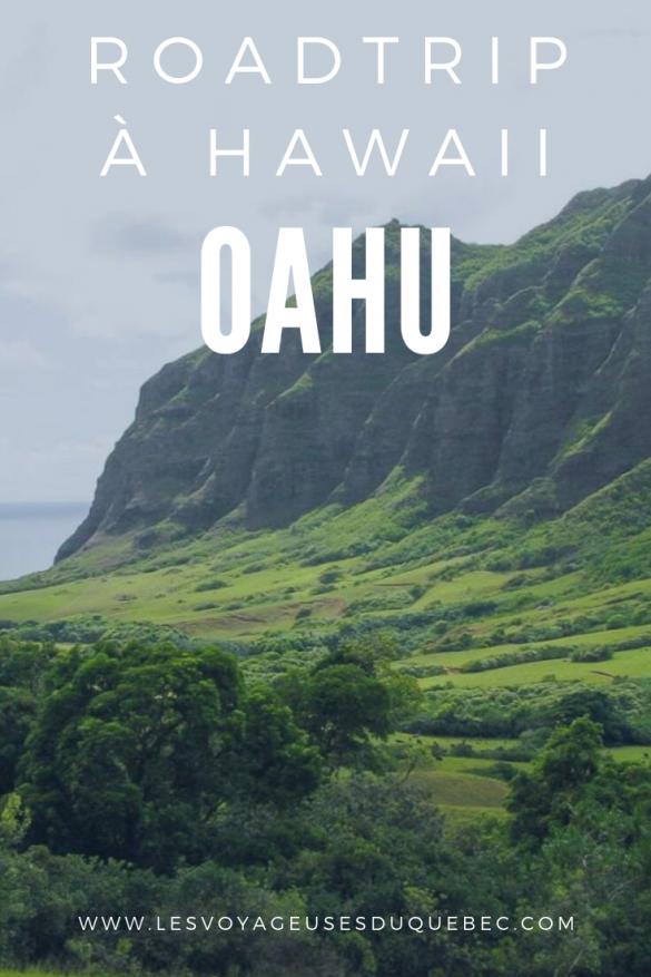 Vous partez en voyage sur lîle dOahu à Hawaii Je vous présente ici mes coups de coeur et activités incontournables à faire lors dun road...