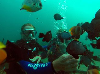 Diving in Boracay, Philippines  #bestbeaches #philippines
