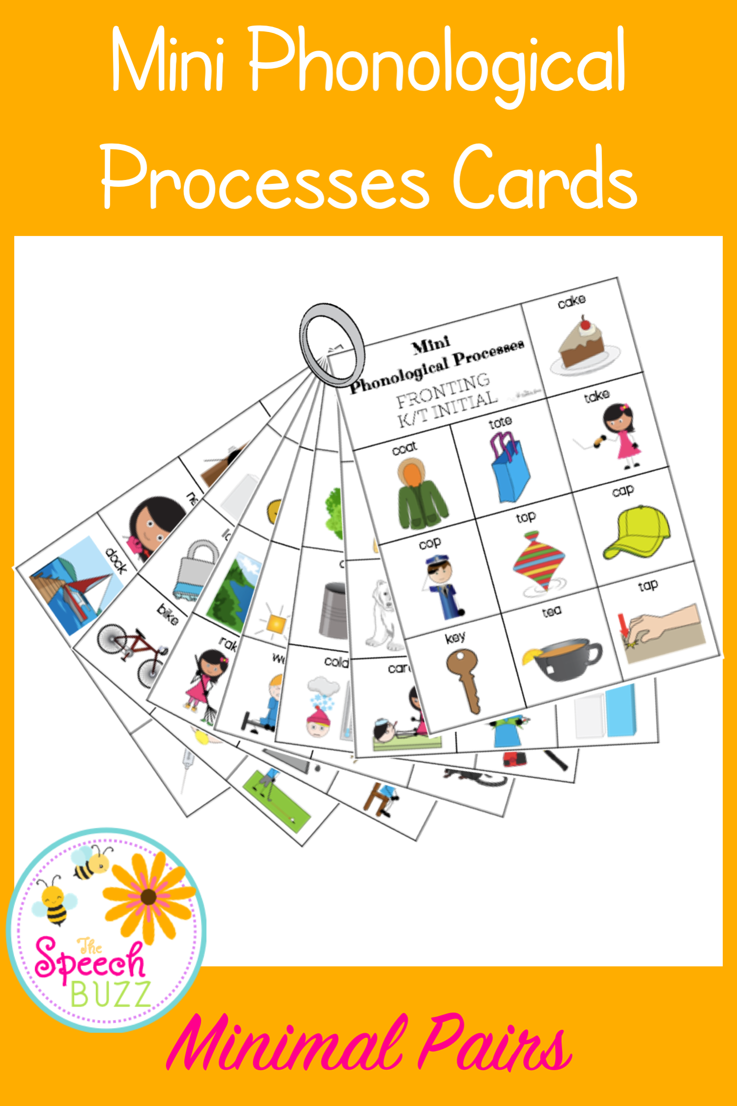 Phonological Processes Minimal Pairs Mini Cards