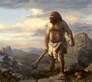 neandertal.jpg 300×267 pixels
