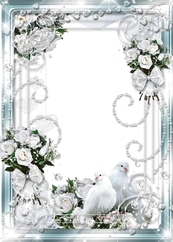 اطارات للصور روعة لتصميم 2014 اطارات جديجة مميزة لتصميم الفوتوشوب 2014 Wedding Picture Frames White Roses Rose Frame