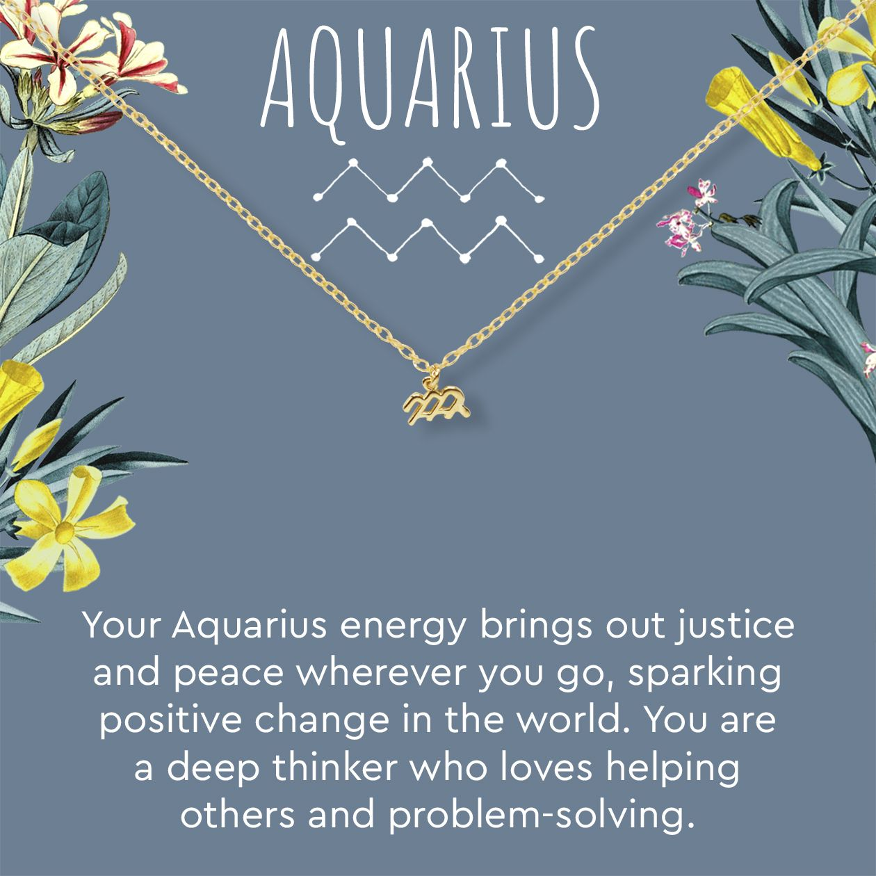 Aquarius Zodiac Gift Necklace Zodiac Gifts Aquarius Zodiac Aquarius And Cancer