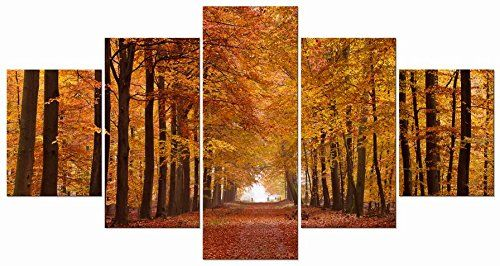 Autumn Forest Leaves Photo on Canvas Print Framed Wall Art Ready to Hang Decor