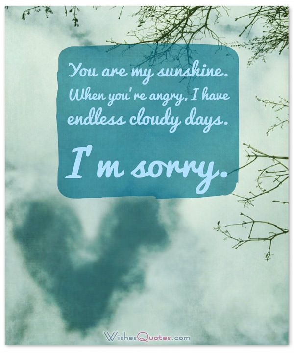 Im Sorry Messages for Wife Sample Apology Letter and Quotes