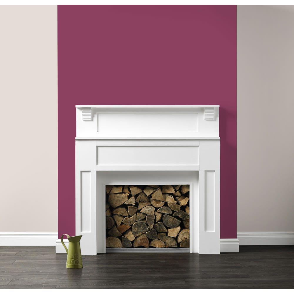 sumptuous design ideas wood paneling designs for walls. Spare bedroom decor  Dulux Feature Wall 1 25L Sumptuous Plum Brilliant At Home Ideas