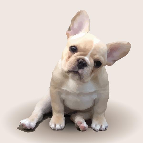 French Bulldog Illustration Cute Baby Animals French Bulldog Puppies Bulldog Puppies