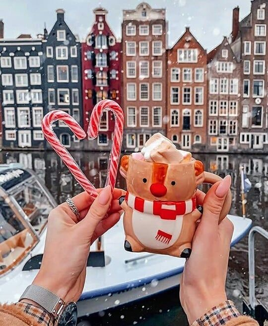 "🍁ALWAYS AUTUMN&CHRISTMAS HERE🎄 on Instagram: ""#christmastree #xmas #instachristmas #joy #ilovechristmas #merrychristmas #mostwonderfultimeoftheyear #christmaslights…"""