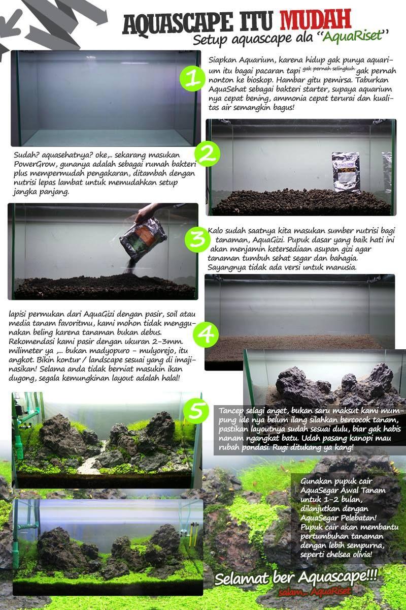 Bakteri Stater Aquasehat Referensi Daftar Harga Terbaru Indonesia Starter Eco One Pin