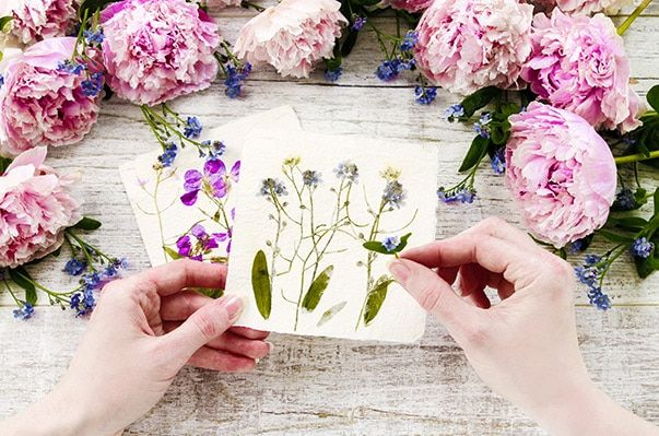 Have you ever wondered how to dry flowers from your gardens? We tested all the methods and compiled it in one article. We have everything you need to know.