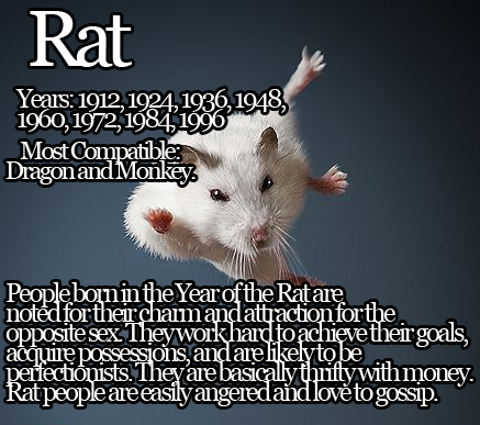 Year of the rat    although its mostly wrong(in regards to
