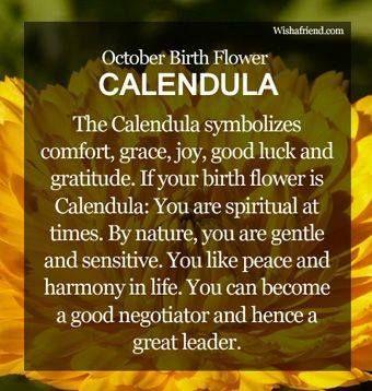 October Birth Flower October Birth Flowers Birth Month Flowers Birth Flowers