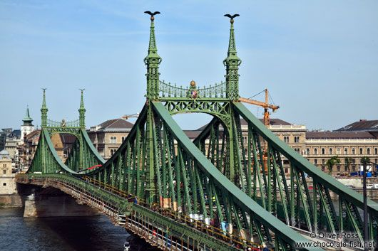 Liberty Bridge, Budapest, Hungary.  Drinking some red wine and enjoying the view.