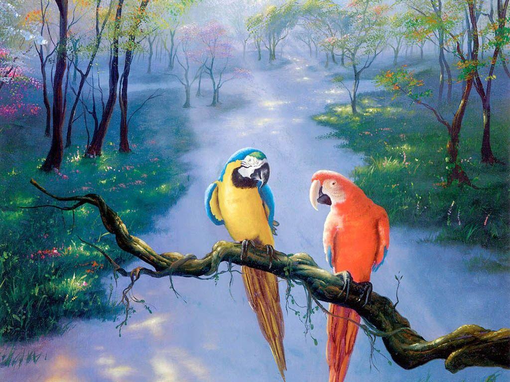 Beautiful Paint parrot beautiful art painting hd wallpaper full hd wallpapers