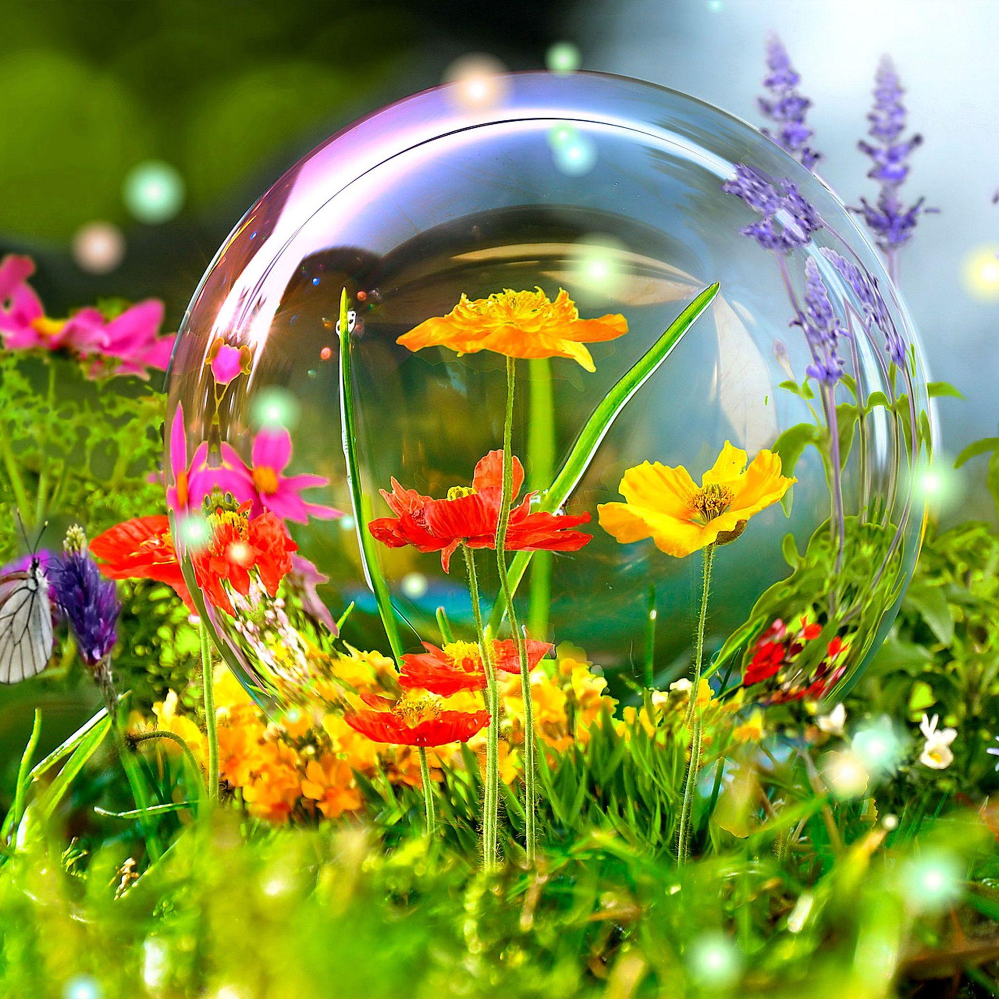 Amazing Wildflowers Butterflies