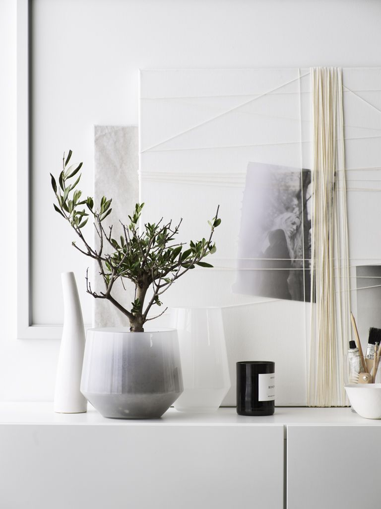 Plants and pots as carefully selected decoration pieces ...