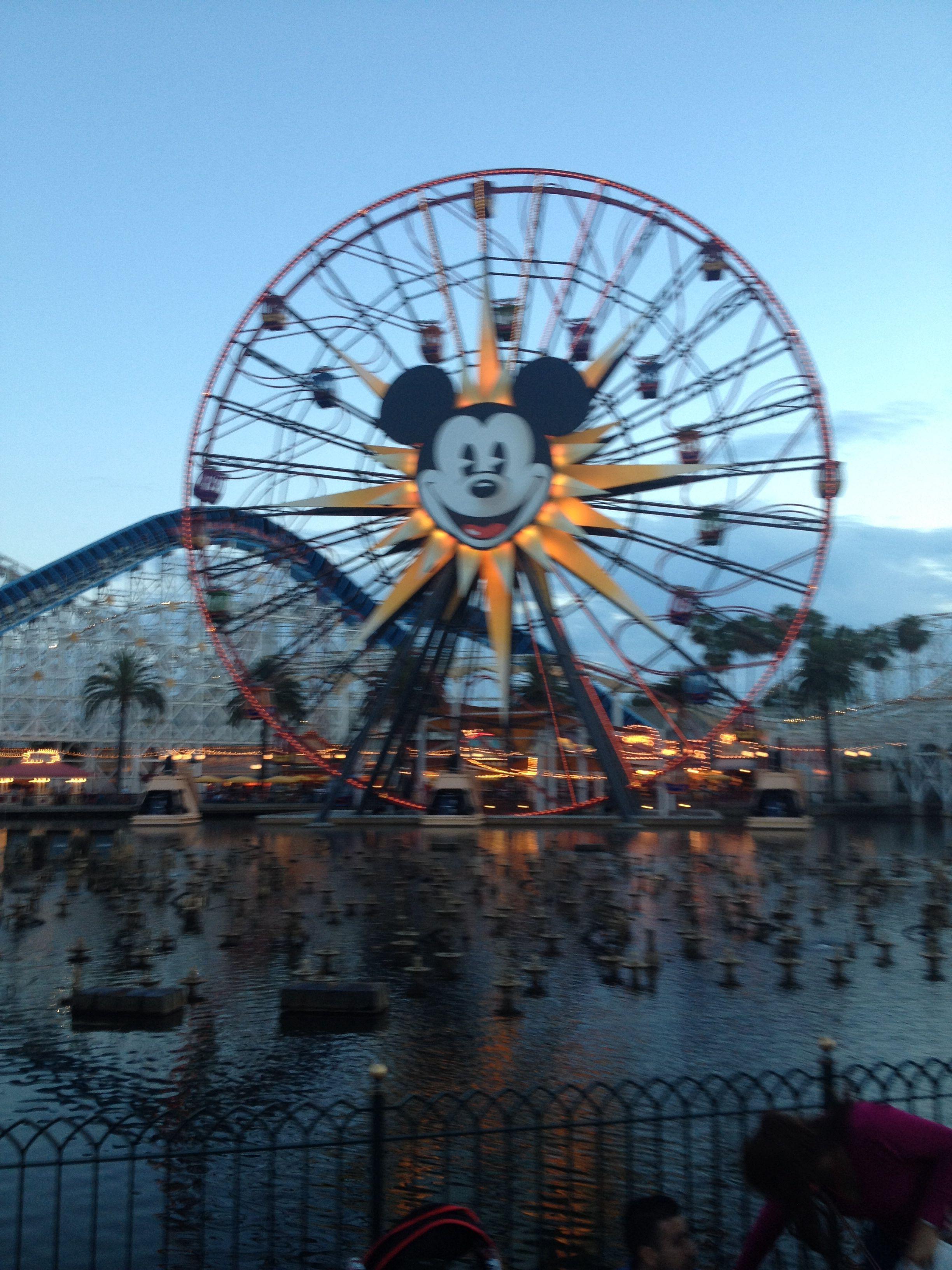 Disneyland 🎡 Disneyland, Travel, Vacation