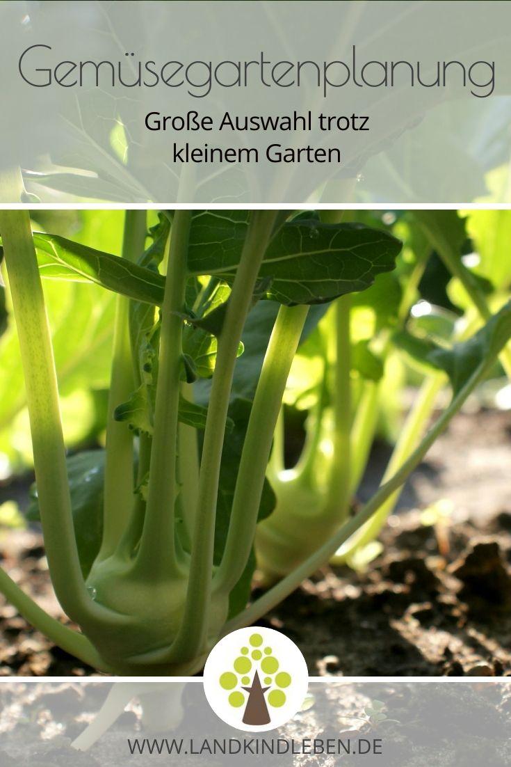 Gemüstegartenplanung #kleinegärten
