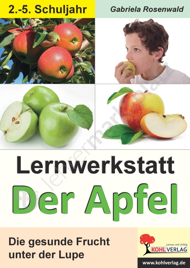 Lernwerkstatt Der Apfel – Sachunterricht | Apfel | Pinterest ...