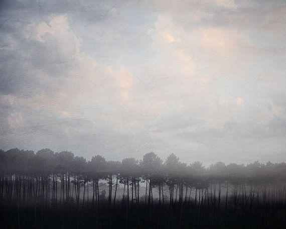 Woodland In Fog Autumn Forest Landscape By Eyepoetryphotography 30 00 Landscape Prints Winter Landscape Nature Photography