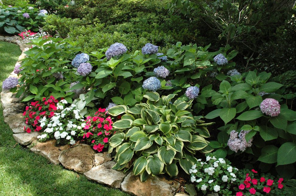 Beautiful Flower Bed Edging Convention Other Metro Traditional Landscape Decorating Ideas With And Hydrangeas Hostas Oklahoma Shade Garden Shade Plants Plants