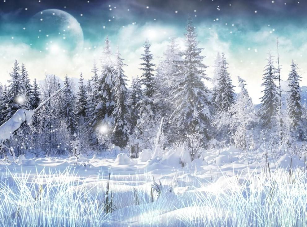 Winter Snow Winter Snow Wallpaper Winter Wallpaper Desktop Winter Wallpaper