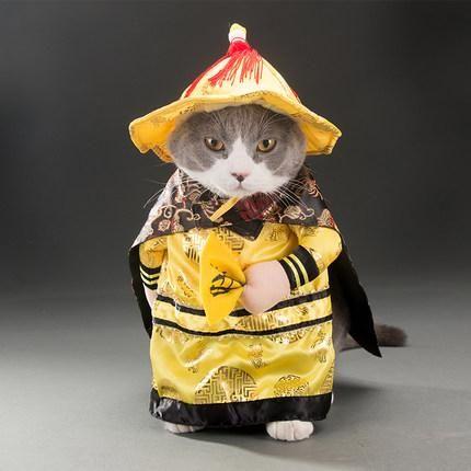 60f1a115feea9 Chinese Emperor Costume   Pets Fashion   Pet costumes, Cat dog ...
