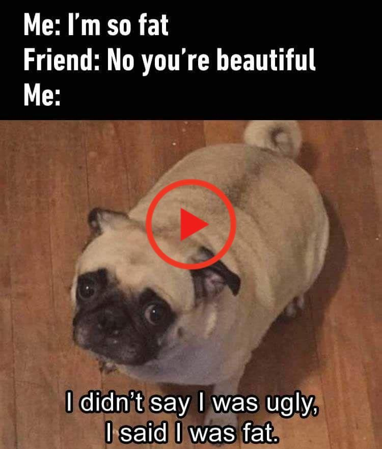 28 Frais Memes Pour Commencer Votre Journee Funny Gif Memes Fresh Memes