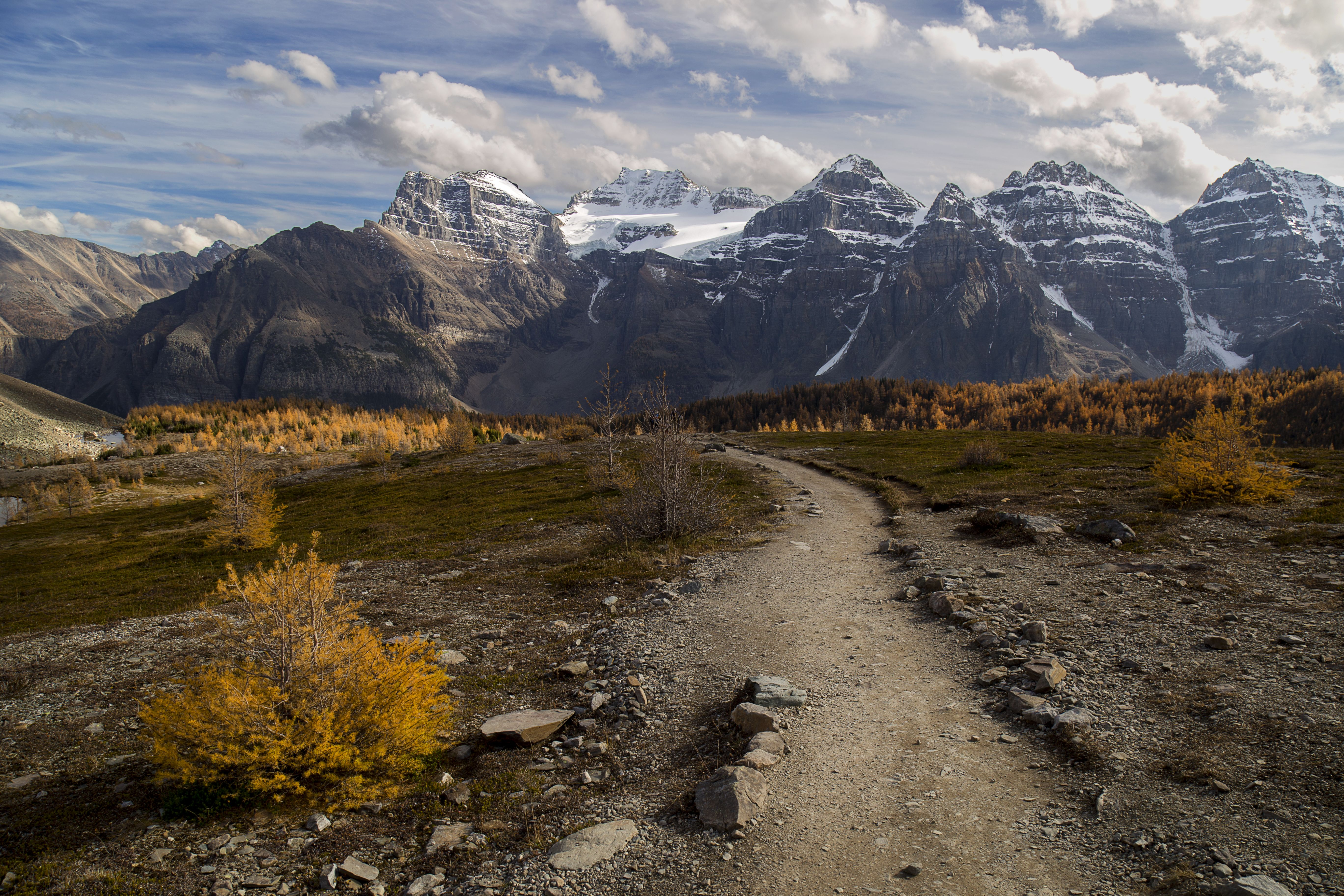 Larch valley trail banff national park oc reddit