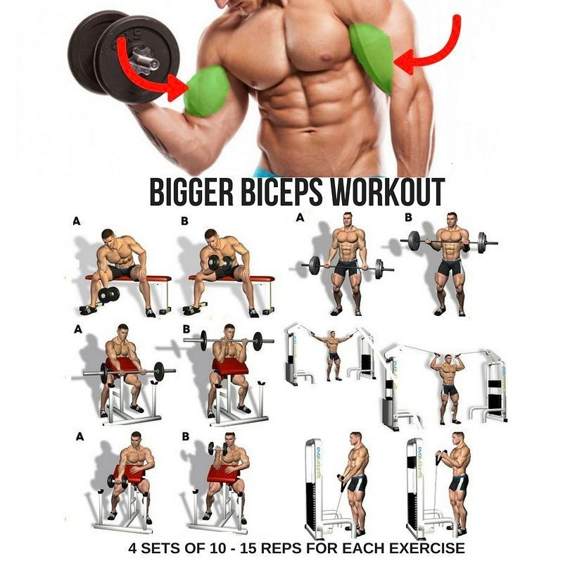 Biceps Workout Step By Step Guide Big Biceps Workout Biceps Workout Biceps Training