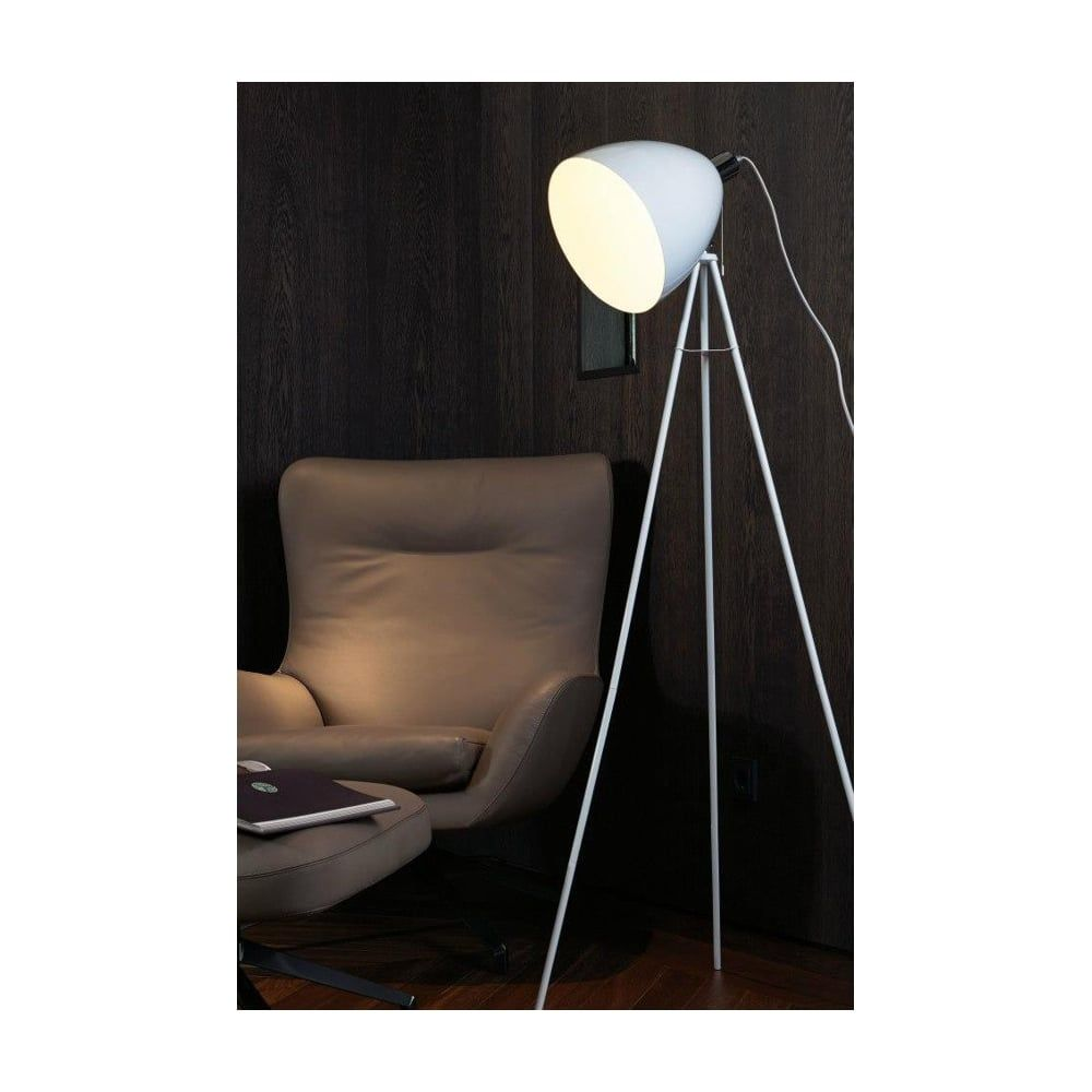 Eglo DON DIEGO Industrial Dome Floor Lamp Finish & Colour: Steel ...