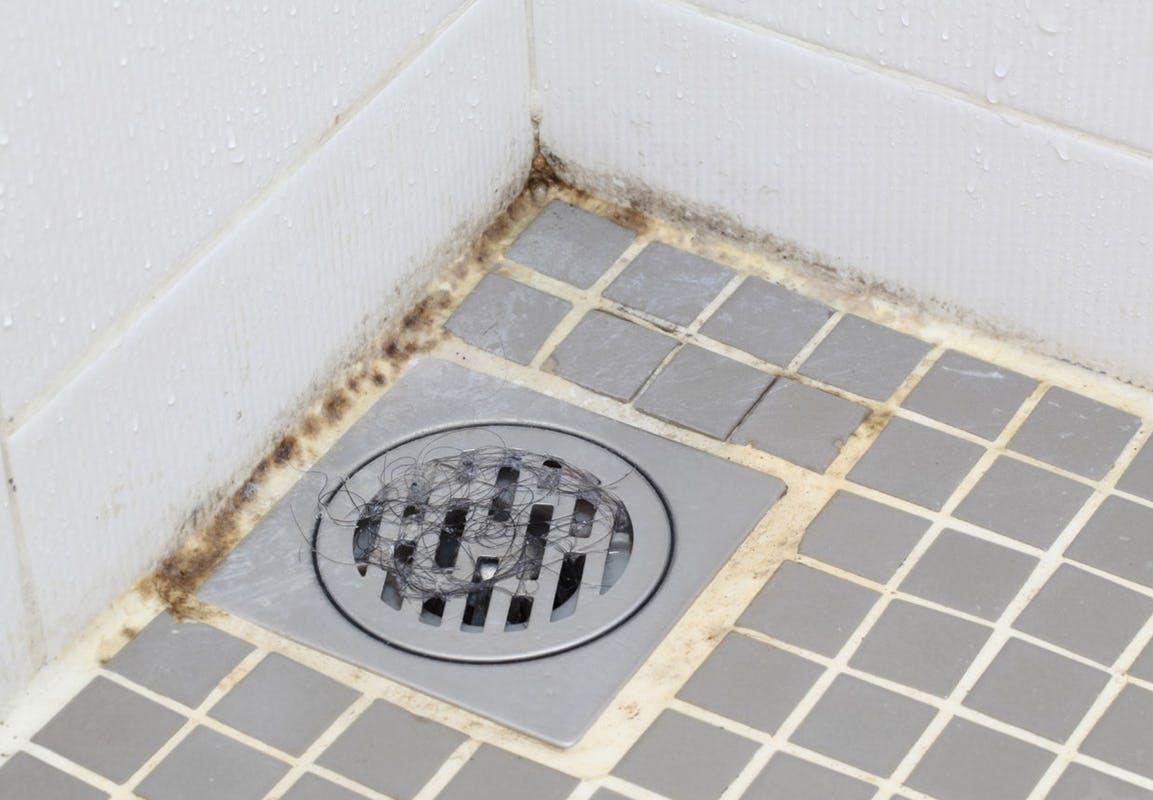 6 simple tips til en rent badeværelse